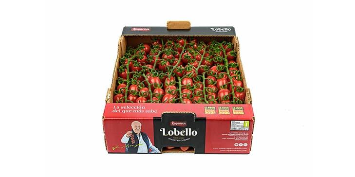packaging Lobello - Caparrós