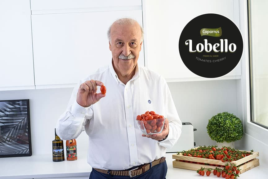 vicente-lobello-bio